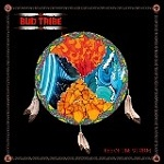Bud Tribe Eye of the Storm LP